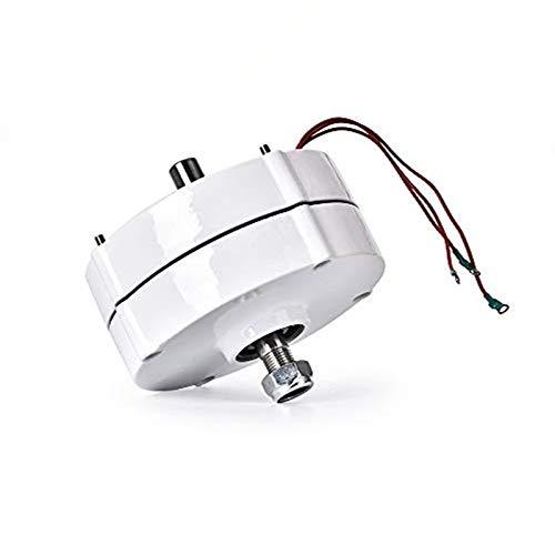 HUKOER Alternatore AC 750r / m 100W 12V a magneti permanenti per turbine eoliche verticali o orizzontali