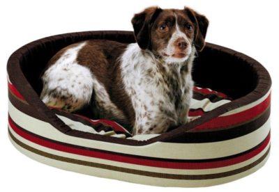 Sconti accessori per cani