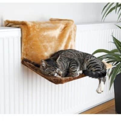 Consigli amache da termosifone per gatti