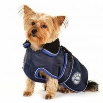 Migliori cappottini per cani: guida all' acquisto e offerte