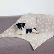 Migliori coperte per cani: guida all' acquisto e offerte
