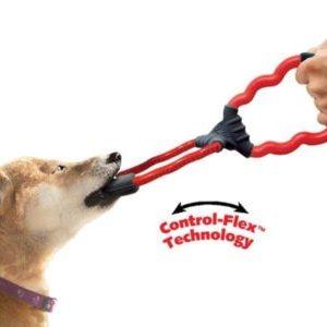 Sconti giochi per cani