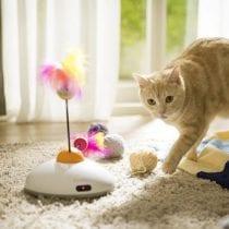 Migliori giochi per gatti: classifica e offerte