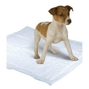 Sconti tappetini igienici per cani