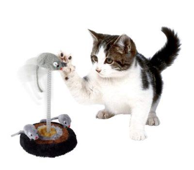 Consigli topolini e animali giocattolo per gatti