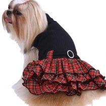 Migliori vestiti per cani: guida all' acquisto e offerte