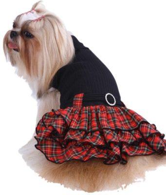 Sconti vestiti per cani