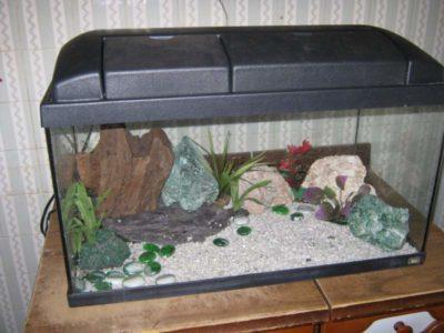 top accessori per acquario