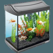 Classifica acquari Tetra: opinioni, offerte, i bestseller