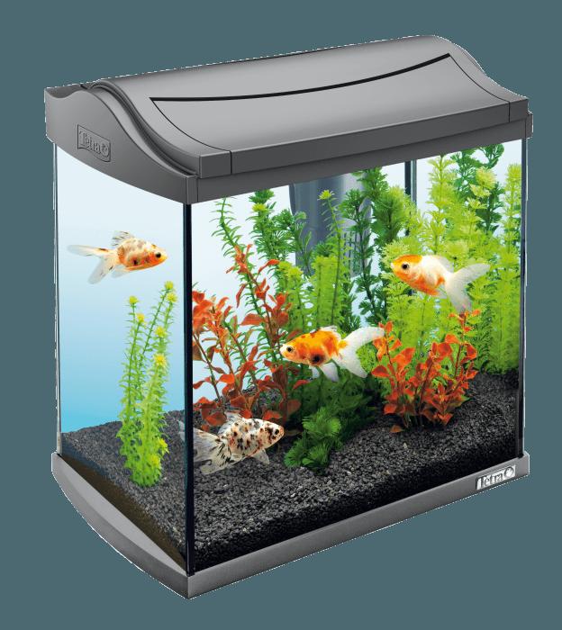 acquari cubo in sconto