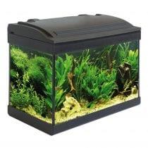 Migliori acquari completi: alternative, offerte, la nostra selezione