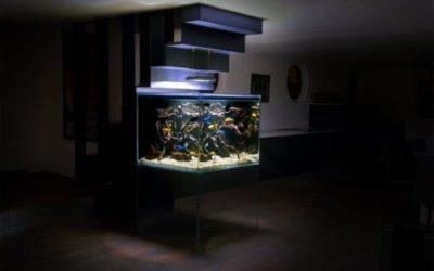 acquari di design occasioni