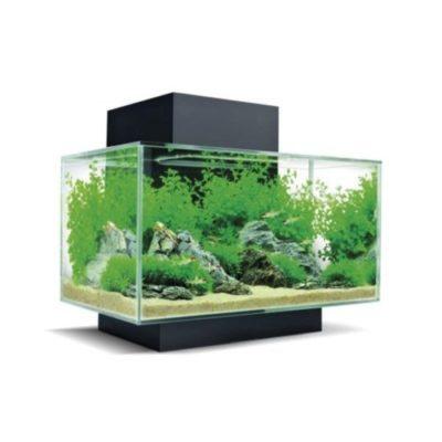 acquari in vetro in offerta