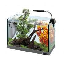 Classifica acquari piccoli: alternative, offerte, guida all' acquisto