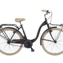 Top 5 bici olandese: opinioni, offerte, scegli la migliore!