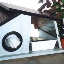 🏠 Migliori casette per gatto da esterno: opinioni, offerte, la nostra selezione