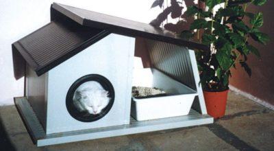 miglior casette per gatto da esterno