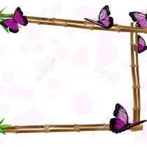 🏆🖼️Top 5 cornici farfalle: recensioni, offerte, la nostra selezione