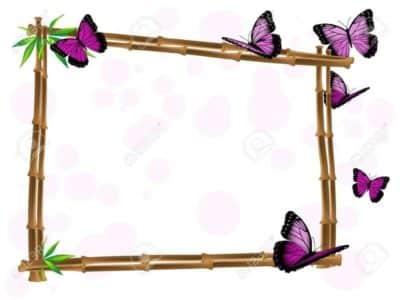 prezzi cornici farfalle