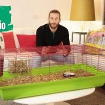 🏆Top 6 gabbie coniglio nano: recensioni, offerte, le bestsellers