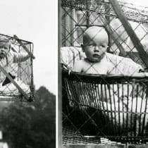 🏆Migliori gabbie neonato: alternative, offerte, scegli la migliore!