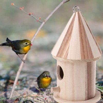 miglior gabbie nidificazione uccelli