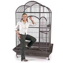🏆Classifica gabbie per pappagalli grandi: recensioni, offerte, le bestsellers