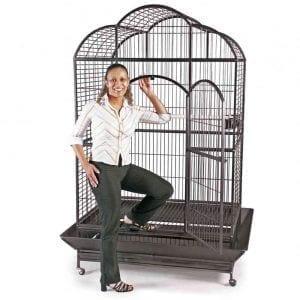 offerta gabbie per pappagalli grandi