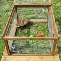 🏆Classifica gabbie tartarughe di terra: alternative, offerte, scegli la migliore!