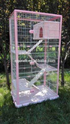 offerta gabbie trappola per gatti