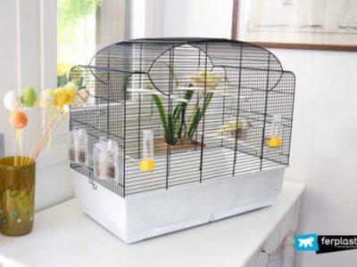 offerta gabbie uccellini