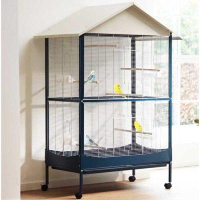 miglior gabbie voliera per pappagalli