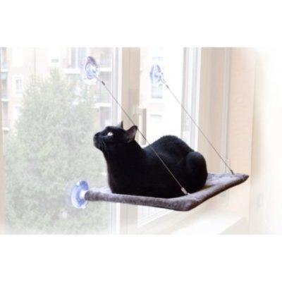 offerta lettino finestra gatti