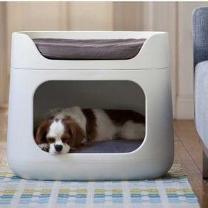 prezzi lettino per cane