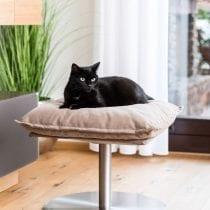 🛏️Top 5 lettino per gatti: alternative, offerte, scegli il migliore!