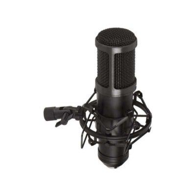 Migliori microfoni a condensatore: opinioni, offerte, la nostra selezione