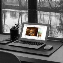 💻Miglior notebook carta del docente: recensioni, offerte, i bestsellers