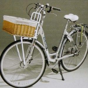prezzi portapacchi bici anteriore