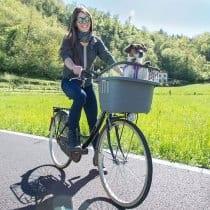 🏆Miglior trasportino bicicletta posteriore: recensioni, offerte, i bestsellers