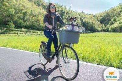 offerta trasportino bicicletta posteriore