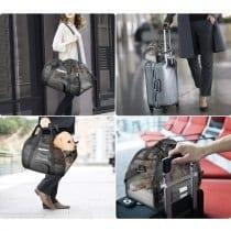 🏆Top 5 trasportino borsa cane taglia piccola: alternative, offerte, scegli il migliore!