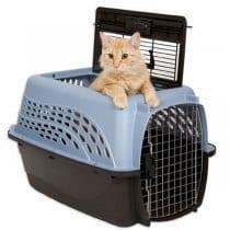 🏆Miglior trasportino gatto grande: recensioni, offerte, guida all' acquisto