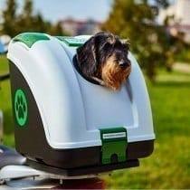 🏆Top 5 trasportino nero cane per auto: opinioni, offerte, i bestsellers
