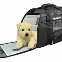 🏆Miglior trasportino nylon cane: opinioni, offerte, scegli il migliore!