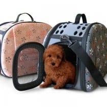 🏆Top 5 trasportino per cani di piccola taglia: alternative, offerte, i bestsellers
