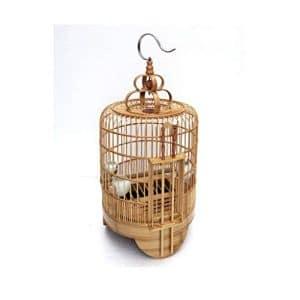 prezzi gabbie bambù
