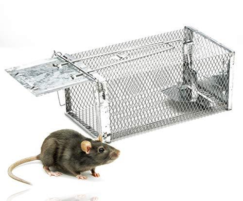 miglior gabbie trappola topi