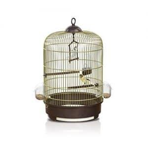 offerta gabbie uccelli titti