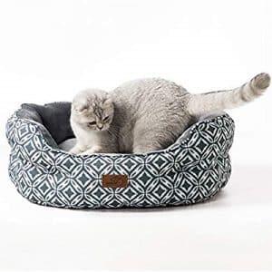 prezzi lettino per gatti