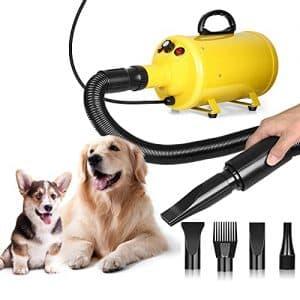 phon toelettatura cani professionali